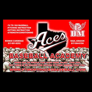 Ace's Baseball Academy